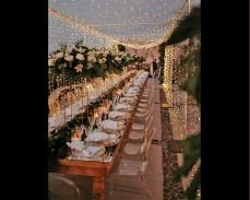 "Декоративно осветление ""Звездно небе"" 100 метра 800 LED лампички под наем"