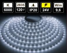 9,6W LED лента СТУДЕНО БЯЛО 120 2835 24V IP20