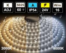 16W LED лента БЯЛО 3000-6000K 60 5025 24V IP54