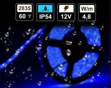 4,8W  LED лента СИНЯ 60 2835 12V IP54 влагоустойчива