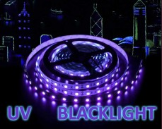 14,4 LED лента ултравиолетова  UV blacklight 60 5050 12V IP20