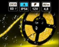 4,8W  LED лента ЖЪЛТА 60 2835 12V IP54 влагоустойчива