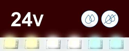 24V бели ленти