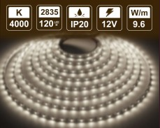 9,6W LED лента БЯЛО 4000K 120 2835 12V IP20