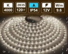 9,6W LED лента БЯЛО 4000K 120 2835 12V IP54 влагоустойчива