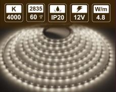 4,8W  LED лента БЯЛО 4000K 60 2835 12V IP20