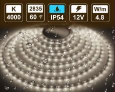 4,8W  LED лента БЯЛО 4000K 60 2835 12V IP54 влагоустойчива