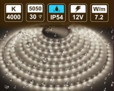 7,2W LED лента БЯЛО 4000K 30 5050 12V IP54 влагоустойчива